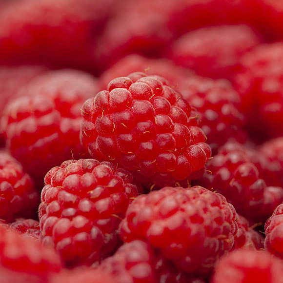 IQF Frozen raspberries (organic and conventional)