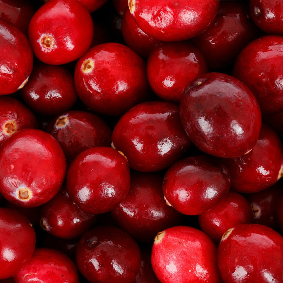 IQF frozen cranberries (organic and conventional)